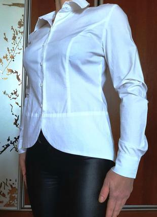 Базовая белоснежная хлопковая рубашка-фрак от patrizia din