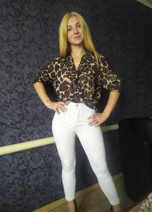 Блуза & рубашка принт леопарда
