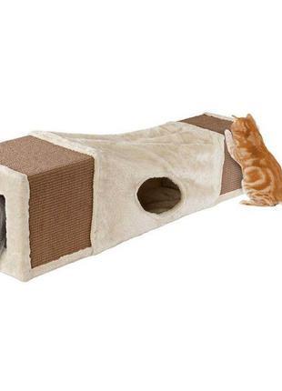 Котячий тунель