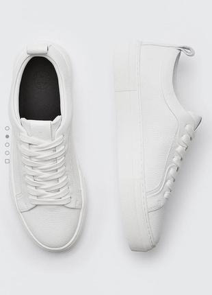 Кеды кроссовки 👟 massimo dutti 36-42 разные модели