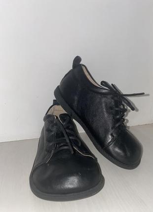 Кожаные туфли для модника honey lou's shoes