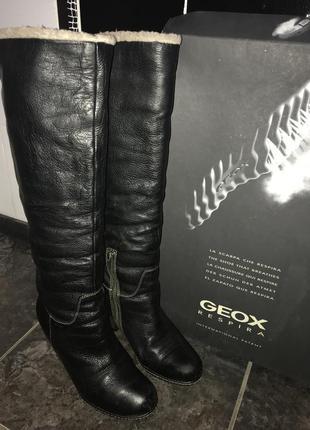 Супер качественные кожаные зимние сапоги geox