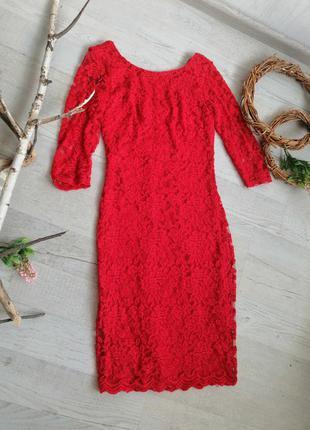 Сукня круживна червона міді