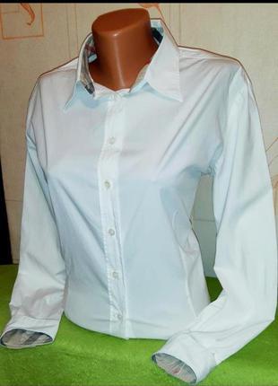 Рубашка классичз burberry оригинал