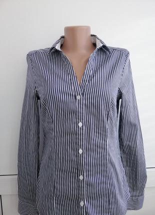 Блуза белая синяя в полосочку