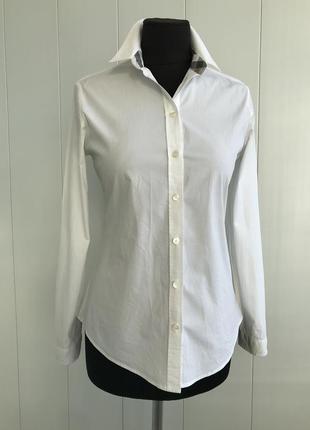 Классическая белая рубашка burberry brit