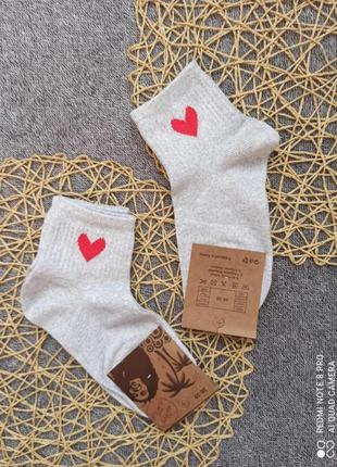 Шкарпетки, носки