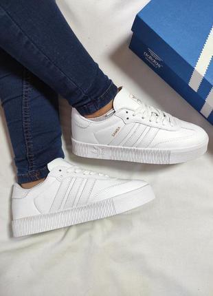 Женские кроссовки adidas sambarose