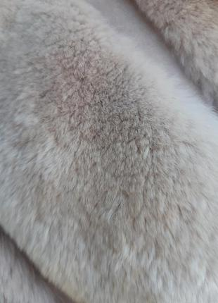 Кролик рекс5 фото