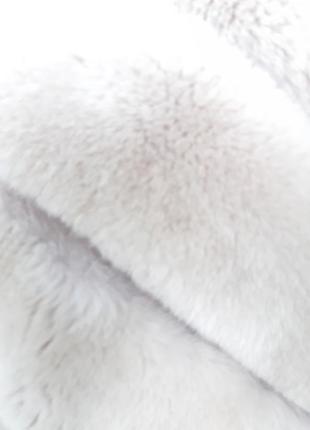 Кролик рекс7 фото