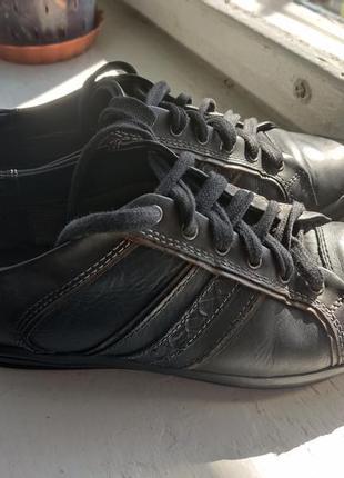 Кожаные кроссовки, кеды geox2 фото