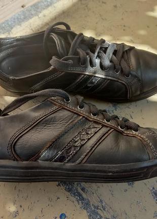 Кожаные кроссовки, кеды geox3 фото