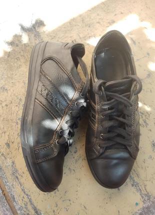 Кожаные кроссовки, кеды geox1 фото