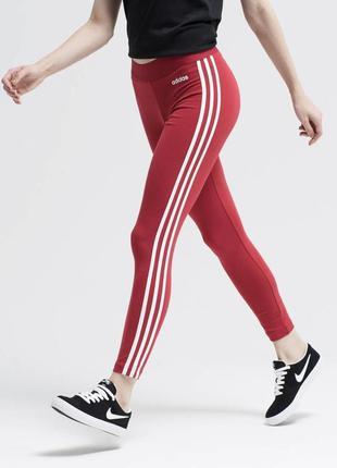 Лосины adidas1 фото