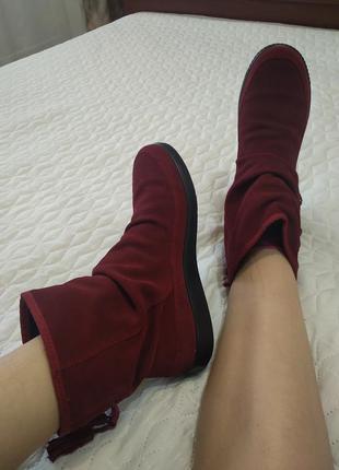 Замшевые ботинки hotter