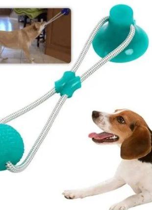 Игрушка для домашних животных, мяч на веревке с присоской. есть разные цвета🌈