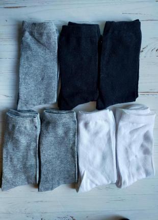 Носки lupilu 35-38 размер