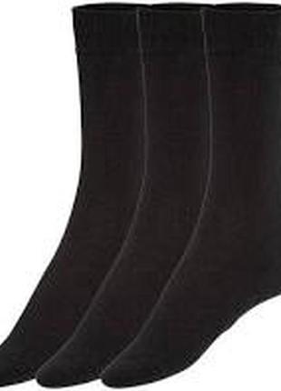 Носки мужские большой размер livergy 3 пары р. 47-50