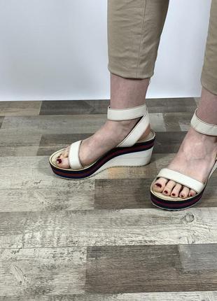 Жіночі босоніжки-gucci calfskin rubber web sandals оригінал