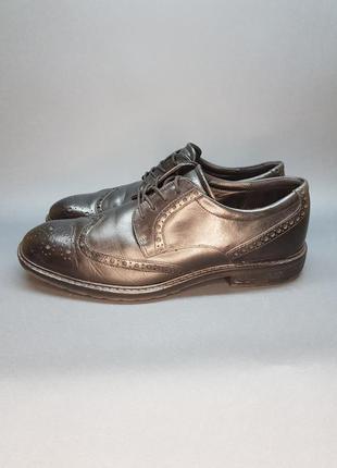 Туфлі чоловічі ecco оригінал з європи