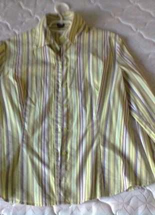 Яркая рубашка в цветную полоску esprit