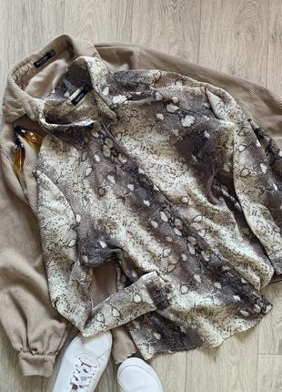 Красивая блуза рубашка змеиный принт boohoo