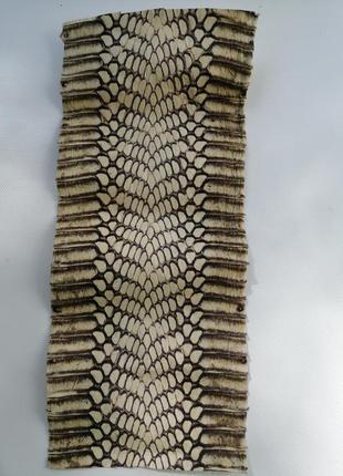Шкура питоновой змеи