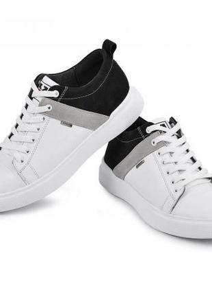 ✨топовые туфли кеды кожа ✨