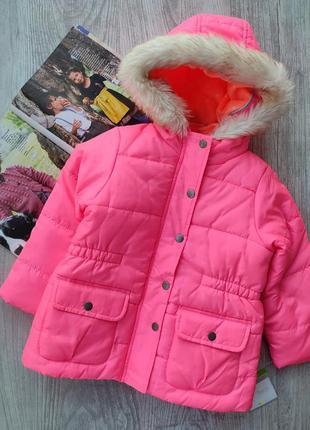 Куртка, курточка 4в1
