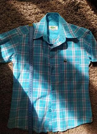 Рубашка с коротким рукавом 110 рост