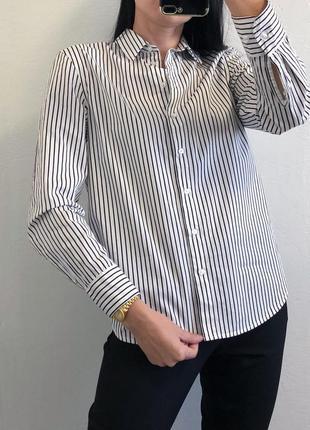 Стильная базовая хлопковая рубашка в полоску