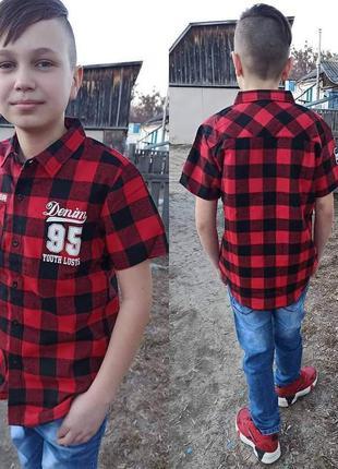 Класні сорочки для хлопчиків.