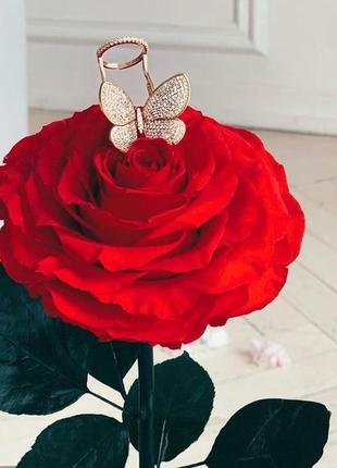 Каблучка метелик , кольцо бабочка
