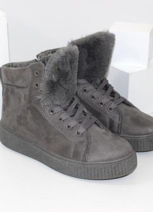Ботинки ботиночки сапоги сапожки кроссовки угги на шнурках серые женские замшевые с меховых языком