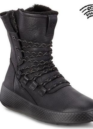 Женские, кожаные, зимние ботинки ecco ukiuk  zw6078