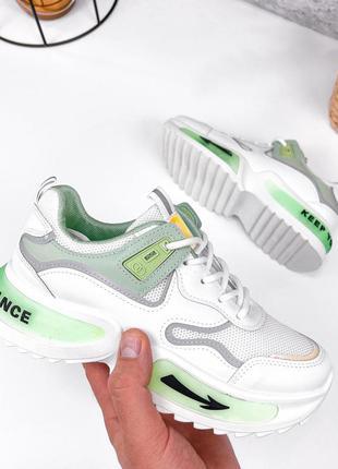 Кроссовки женские салатовые кожаные кожа экокожа белые зелёные