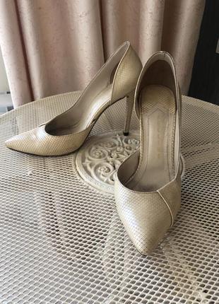 Fellini туфли натуральная кожа лазерная под питона