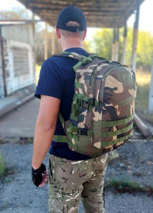 Рюкзак на 40 литров raid с системой м.о.l.l.e (вудланд)