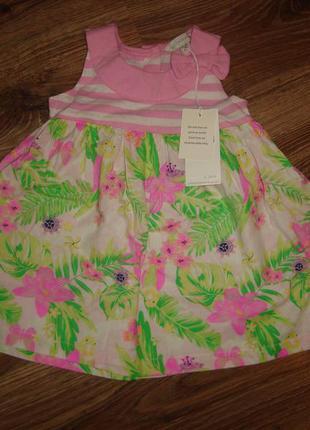 Pumkin patch новое хлопчатое платье на 3-6 мес