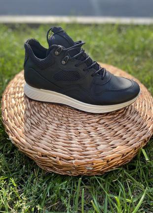 Демісезонні кросівки ecco