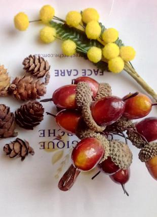 Декор для поделок: шишки, жолуди, мимоза