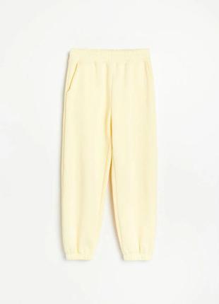 Теплые штаны брюки джогеры reserved