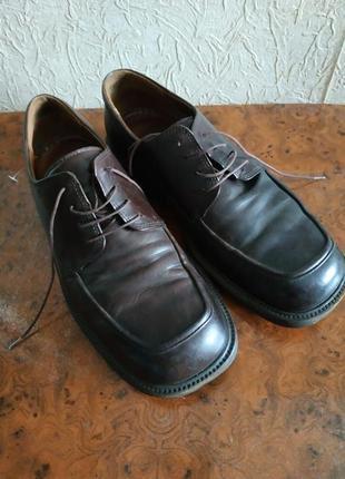 Кожаные туфли экко, ботинки мужские кожаные, ecco