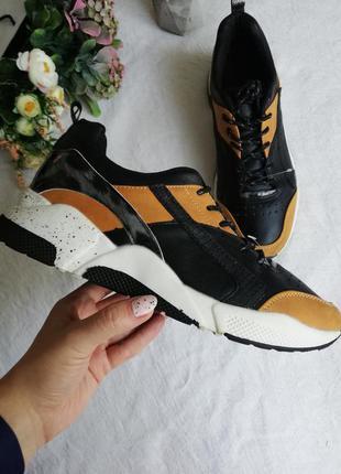 Кросівки яскраві graceland4 фото