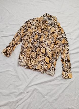 Рубашка в принт рептилия змеиный1 фото