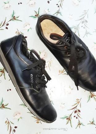 🌿1+1=3 фирменные черные кожаные женские кроссовки ecco натуральная кожа, 39 размер1 фото
