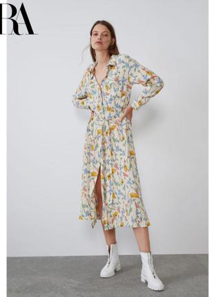 Платье рубашка на пуговицах с поясом платье zara1 фото
