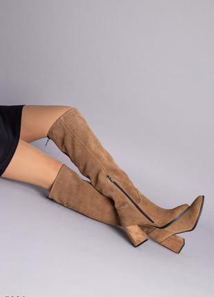 Ботфорты женские замшевые темно-бежевого цвета демисезонные