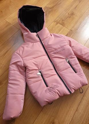 Курточка шикарная