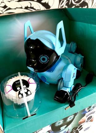 Инерционная собака